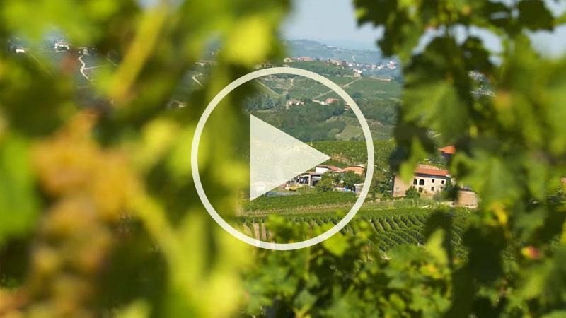 Chef Alessandro Borghese nelle terre dell'ASTI Docg - Santo Stefano Belbo