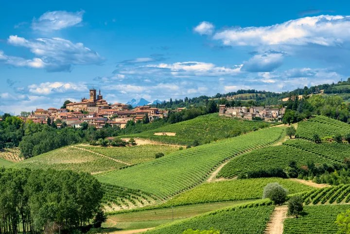 Country landscape of Monferrato (Asti, Piedmont, Italy) at summer, with vineyards © clodio